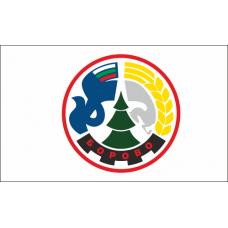 Флаг на Борово за бюро 16 х 22 см.