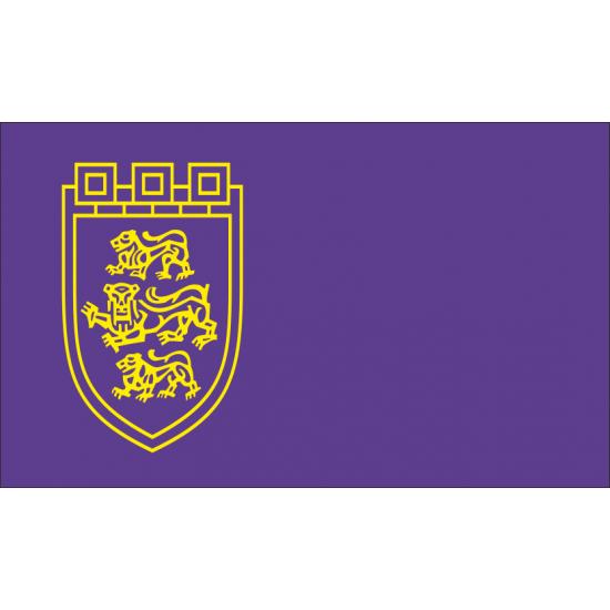 Флаг на Велико Търново печатан
